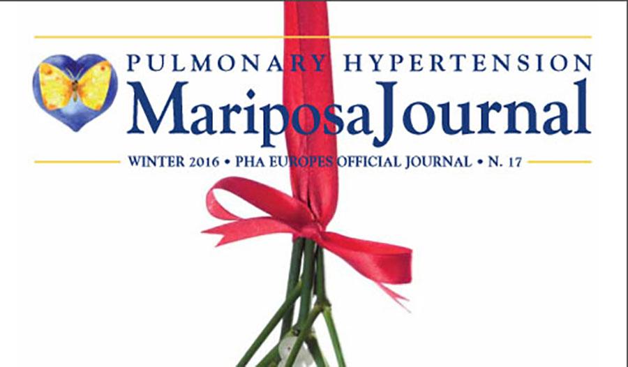 Mariposa Banner1